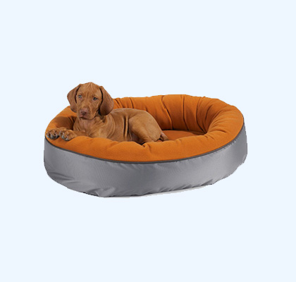 Extra Large Outdoor Dog Bed